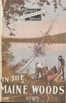 In the Maine Woods: 1925 Edition by Bangor and Aroostook Railroad
